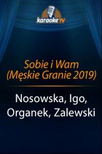 Sobie i Wam (Męskie Granie 2019)