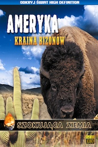 Ameryka. Kraina bizonów