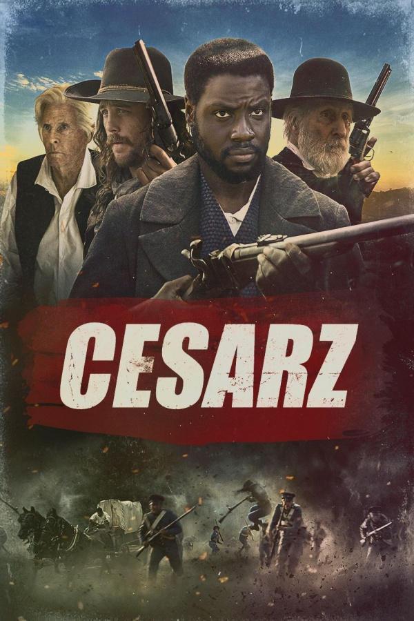 NEW Cesarz