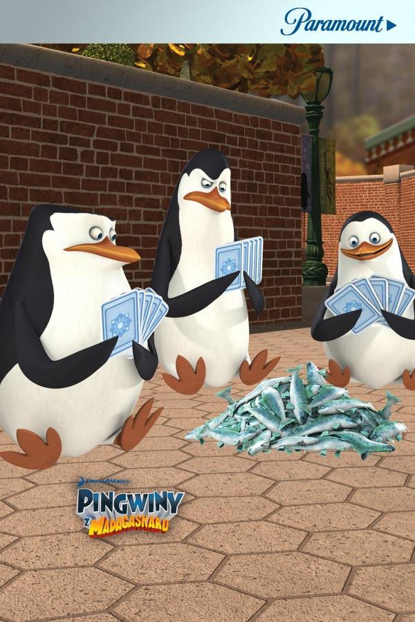 Pingwiny z Madagaskaru 2, odc. 1